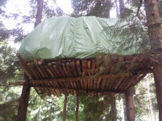 1339999435671.jpg 1339999436926.jpg 1339999436061.jpg & Bear and Boar proof shelter | My Survival Forum | Survivalist ...