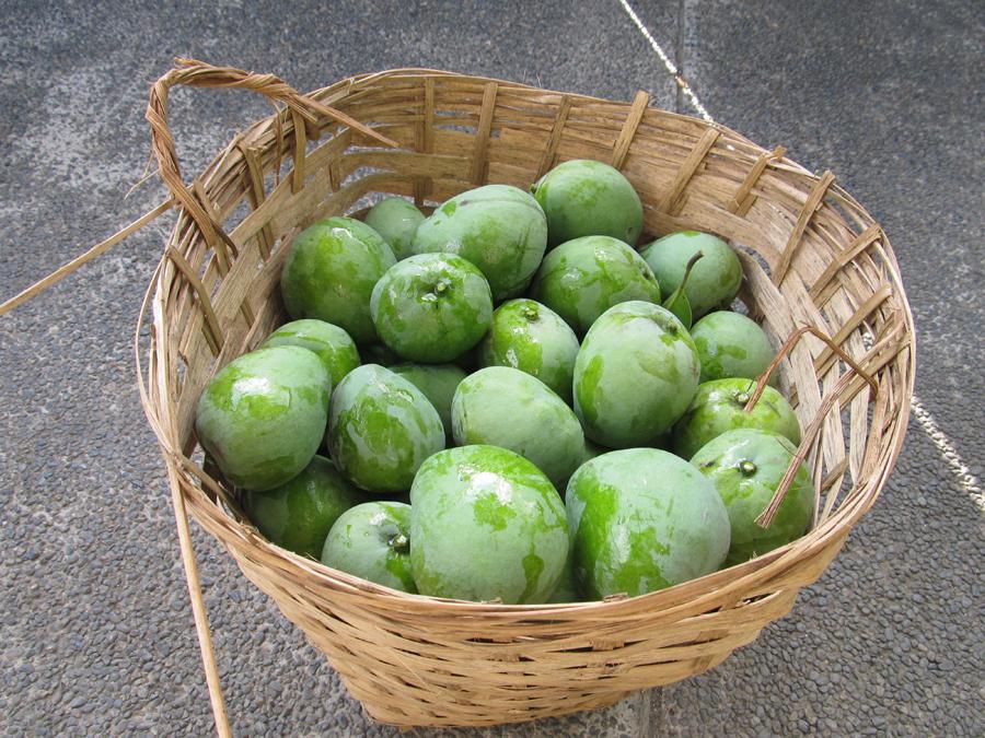 IMG_2437 indian mango tiklis.jpg